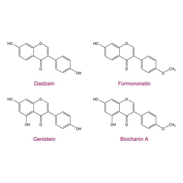 Phytoestrogens - Isoflavones